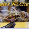Louie_NZ_cicada_logo