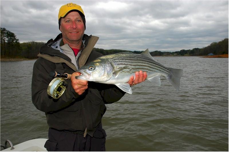 Henry cowen s guide service dan blanton fly fishing for San luis reservoir fishing report