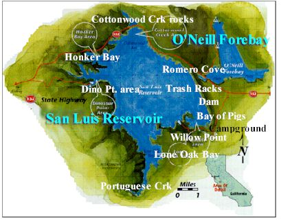 San luis reservoir stripers on the fly dan blanton fly for San luis reservoir fishing report